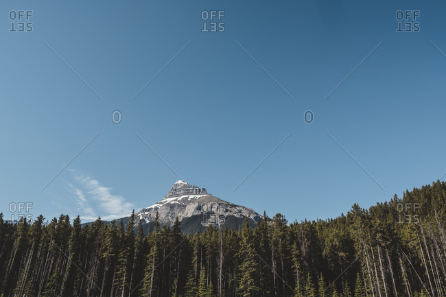 Scenic landscape with forest and mountain peak under blue sky, Canadian Rockies, British Columbia, Canada