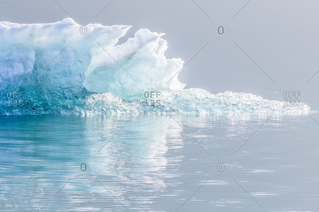 Photograph of ice in Endicott Arm fjord, Alaska, USA