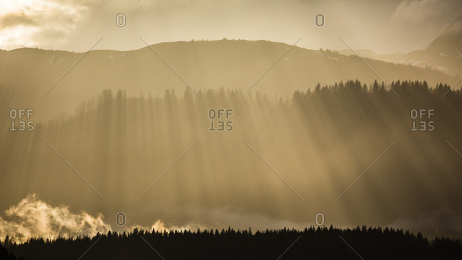 Scenic landscape with sunbeams shining over silhouette of forest at sunset in Glacier Bay National Park, Alaska, USA