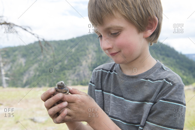Photograph of a six year old boy ho Ding a common fence lizard