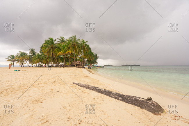 View of sandy shoreline with green palm trees in windy and rainy weather with overcast in sky, Panama