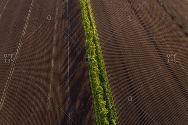 Aerial view pattern meadow field in Estonia.