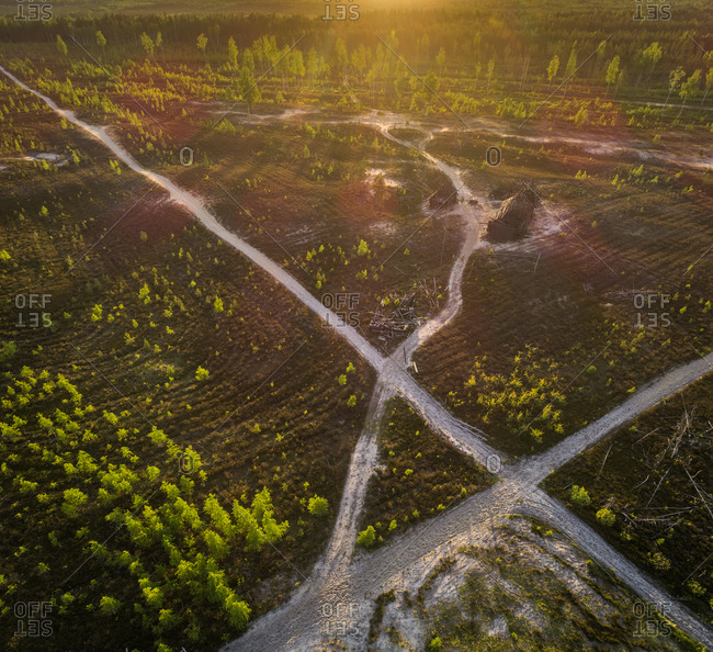 Aerial view road passing on growing forest, Estonia.