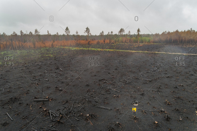 Aerial view man standing on burn field in Estonia.