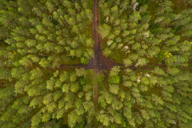 Aerial view of dirty crossing road going through forest in Forby on Vormsi island, Estonia