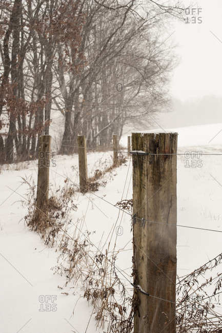Fence line in snowy winter