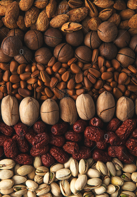 Variety of whole nuts in shells and dates arranged in rows