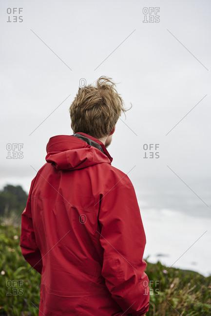 Rear view of man at Big Sur in California, USA