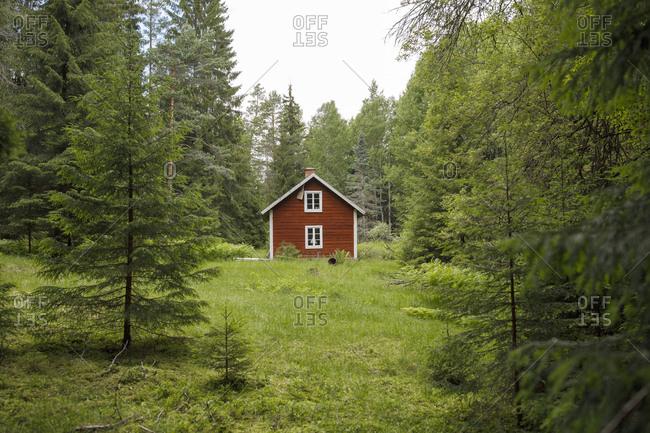 Cabin in woods in Ostergotland, Sweden