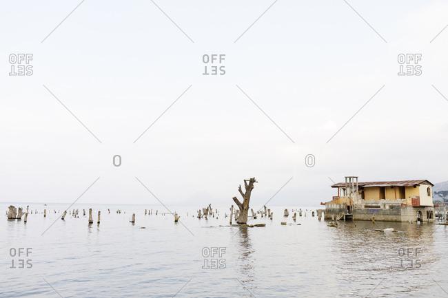 Tree stumps and house on Lake Atitilan in Guatemala