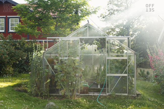 Greenhouse on lawn