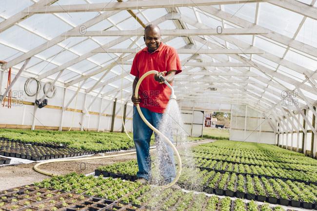 Garden centre worker watering garden