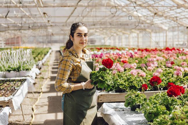 Garden centre worker holding plants