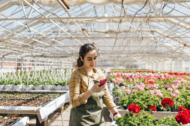 Garden centre worker on smart phone