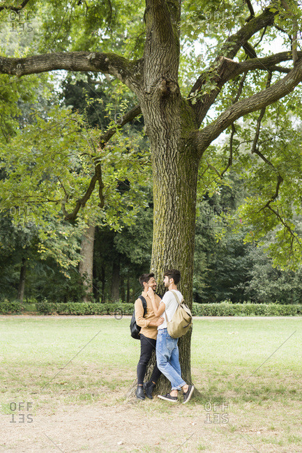 Happy young gay couple leaning against tree in city park looking at each other