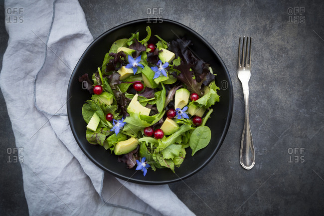 Bowl of mixed salad with avocado- red currants and borage blossoms