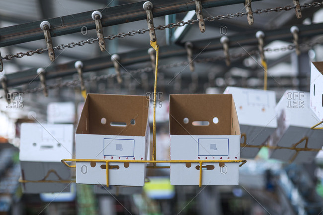 Cardboard boxes in a factory