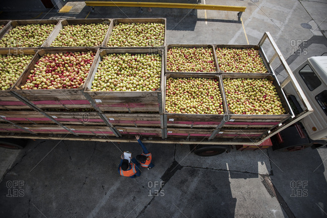 Truck transporting apples