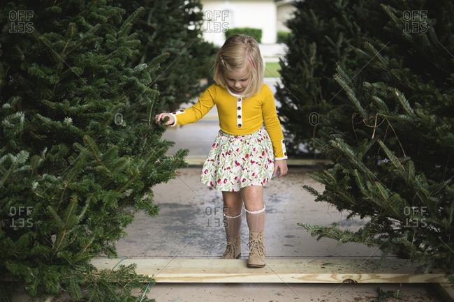 Girl walking through a Christmas tree lot