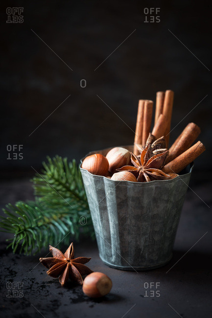 Hazelnuts, star anise and cinnamon sticks in a vintage tin mold on dark background as a concept of festive Christmas baking. Shallow depth of field