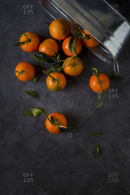Bucket of tangerines emptied onto a table