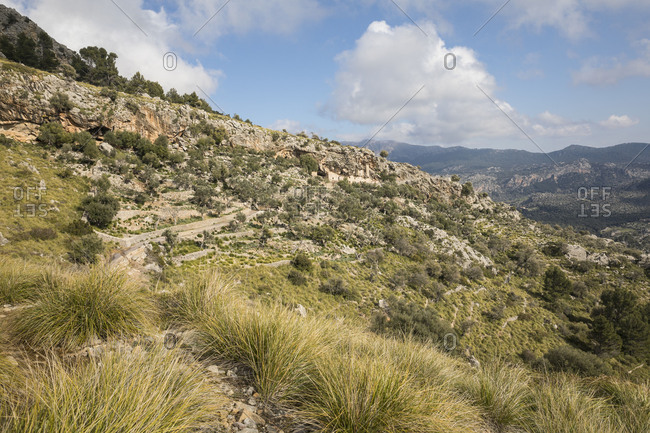 Walk around the Puig Roig, view to the cave houses Es Cosconar, at Escorca, Mallorca, Balearic Islands, Spain