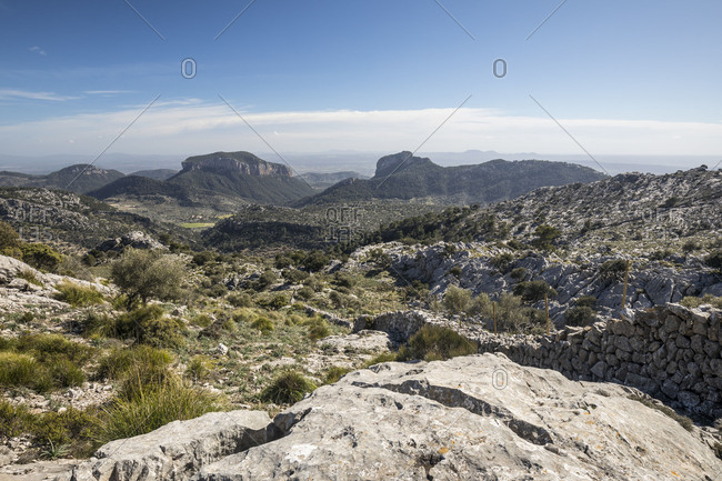 View of the Tramuntana mountains from the foot of the Puig de l'Ofre, Mallorca, Balearic Islands, Spain