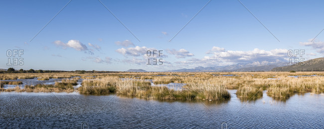 Natural Park S'Albufera, in the Northeast of Mallorca, Balearic Islands, Spain