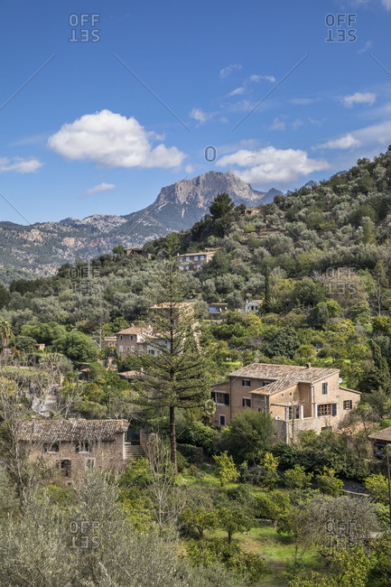 View over Fincas to the Puig Major (1445m), the highest mountain of the island, Soller, Mallorca, Balearic Islands, Spain