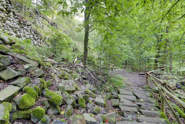 Basalt prism wall at Gangolfsberg, nature reserve Lange Rhon, UNESCO Biosphere Reserve, Bavarian Rhon Nature Park, Bavaria, Germany,