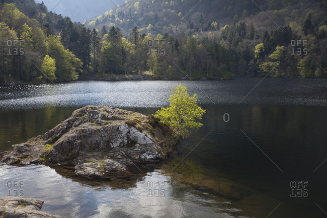 Idyllic rocky island in mountain lake, Lac d'Alfeld, Vosges, Alsace, France