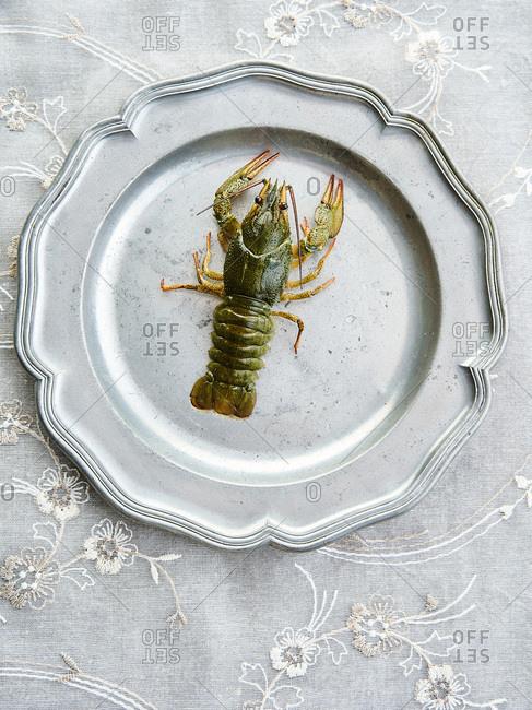 Crayfish on metal platter