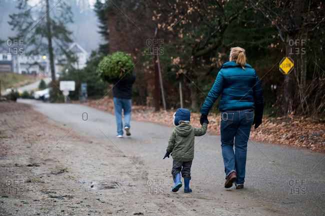 Toddler boy walking with grandparents on a Christmas tree farm
