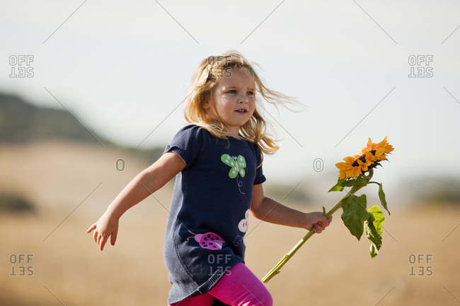 Young girl carrying sunflower.