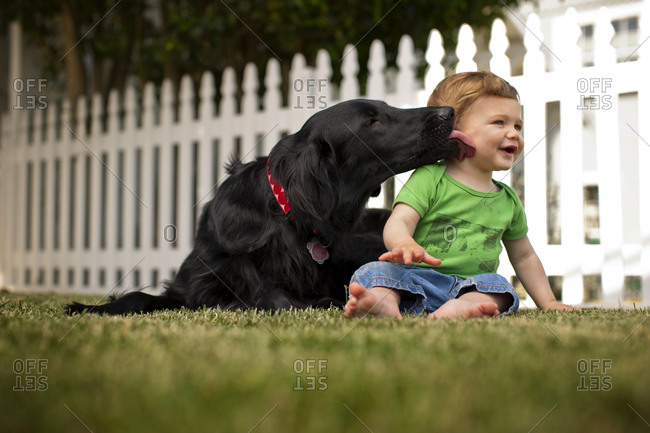 Smiling baby boy sitting in back yard with pet dog.