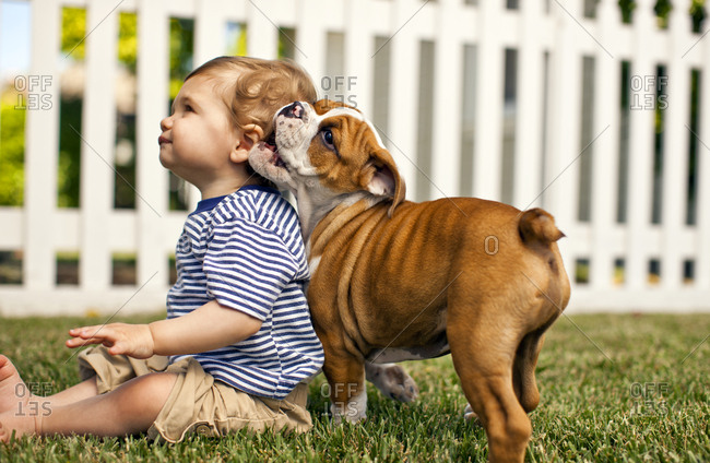Young toddler and his dog in the back yard of their home.