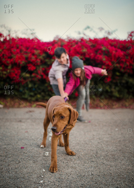 Two children pulling on leash of dog