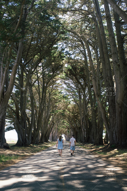 Two kids walking down road lined with trees
