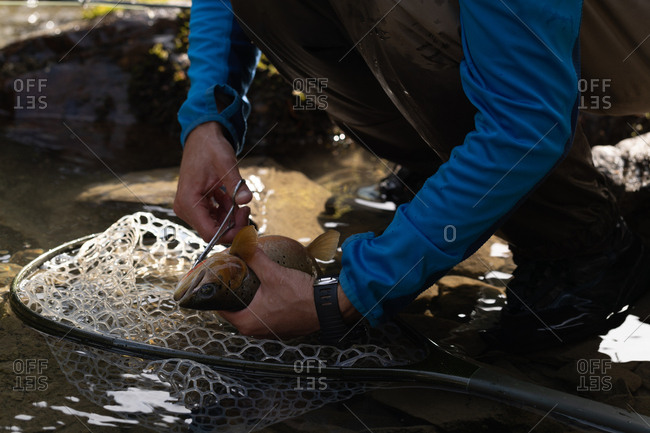 Low section of fisherman removing fishing hook from fish with scissor