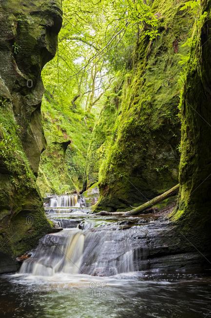 Great Britain- Scotland- Trossachs National Park- Finnich Glen canyon- The Devil's Pulpit- River Carnock Burn