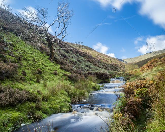 Great Britain- England- Derbyshire- Peak District- Fairbrook in autumn
