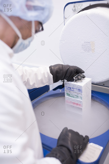 Scientist in lab storing biological material in cryo store