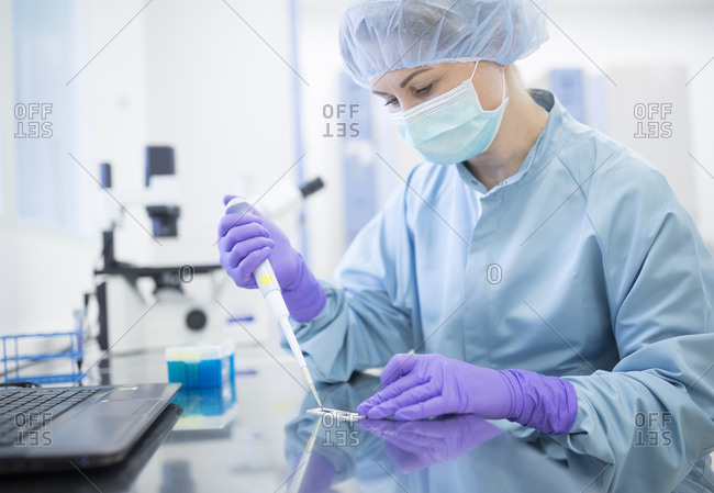 Preparation of check samples of stems in laboratory for drug production