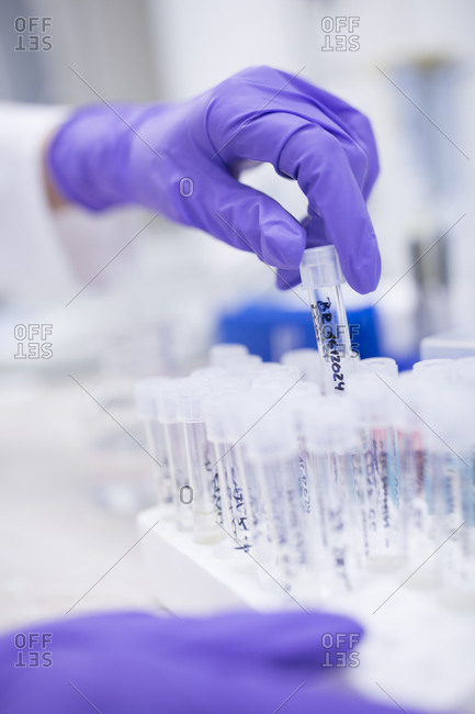 Preparation of samples for quality check during drug processing