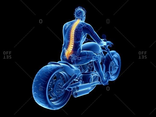 3d rendered illustration of a biker's spine.