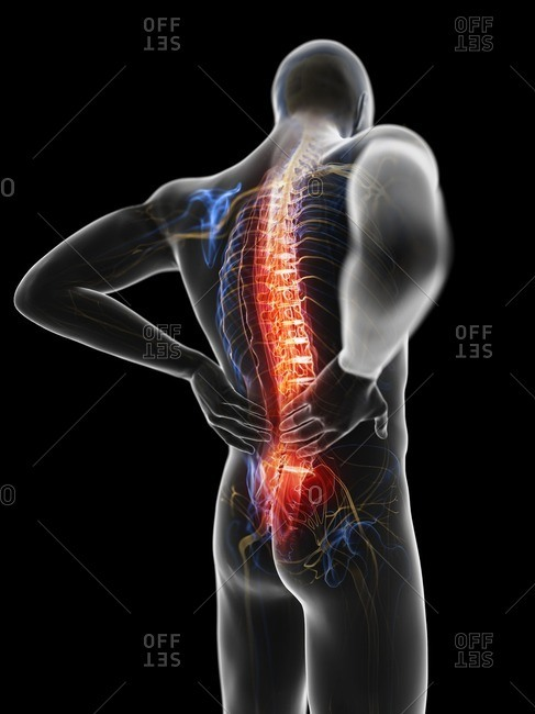 3d rendered illustration of a man with backache.
