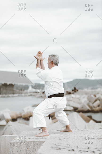 Karate fighter practicing martial arts