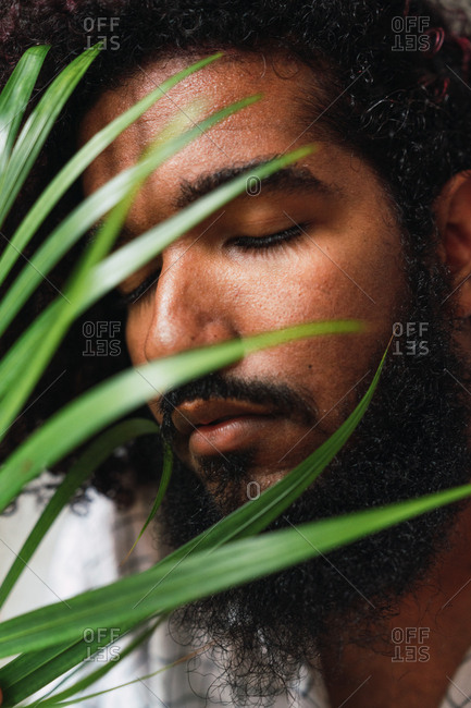 Closeup face of bearded Hispanic guy with closed eyes and green leaves of plant in Colonial Zone in Santo Domingo City, Dominican Republic