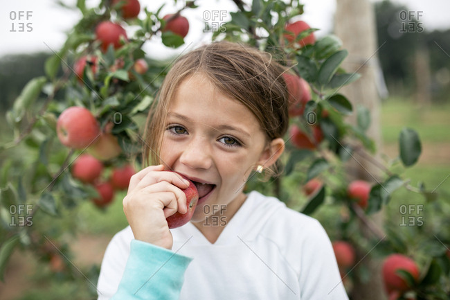 Portrait of cute girl biting apple while standing against fruit trees