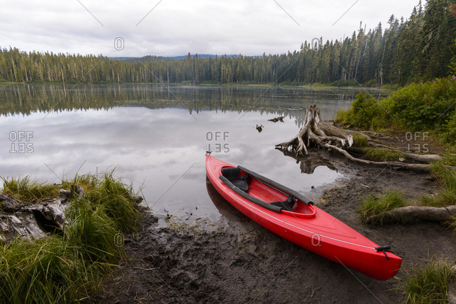 Red kayak moored at Takhlakh Lakeshore in forest